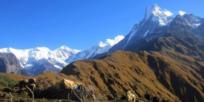 Dhampus Sarangkot Hike